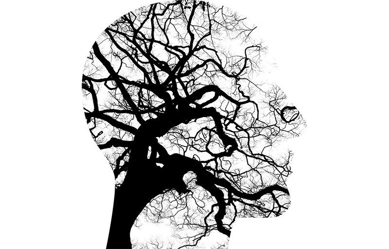 Reflectii despre arta psihoterapiei
